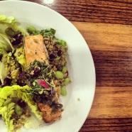 Salmon Fillet on a Barley Salad
